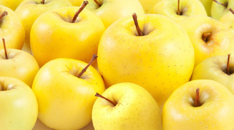 Apples: Benefits And Contraindications