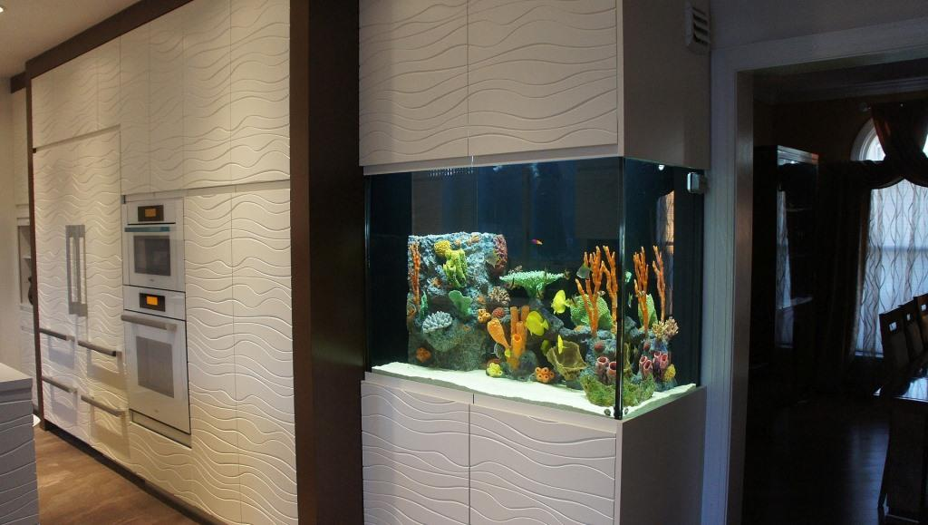 Care For The Aquarium At Home And The Rules Of The Fish