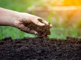 What is the Stabilisation of Soil?